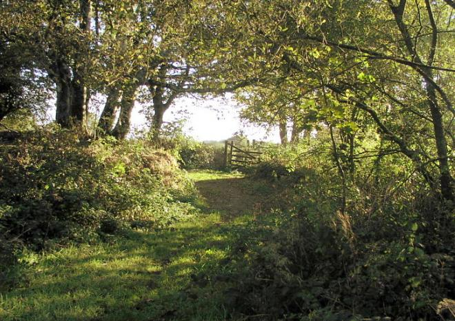 Old Newham Farm - deep in the countryside - away from traffic & crowds