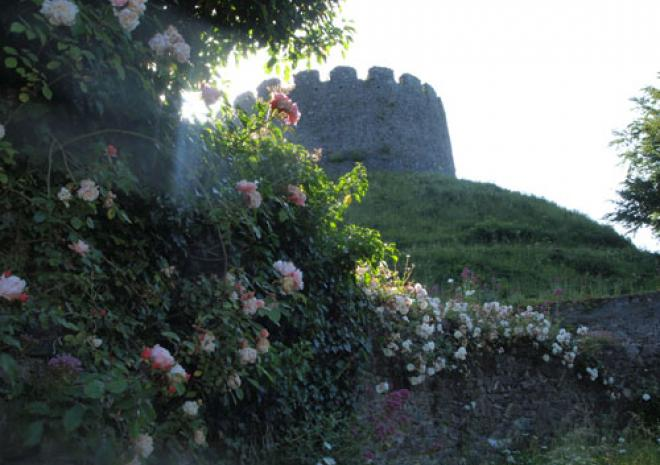 Things to do in Cornwall | Tremanton Castle Garden | Saltash | Cornwall
