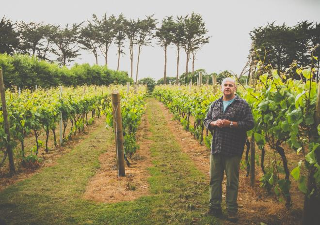 Polgoon Vineyard Tour