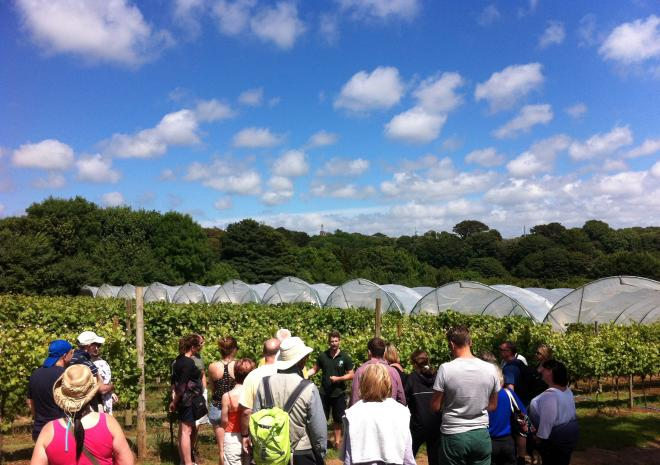 Polgoon Wine tours, Cornwall, Food & Drink
