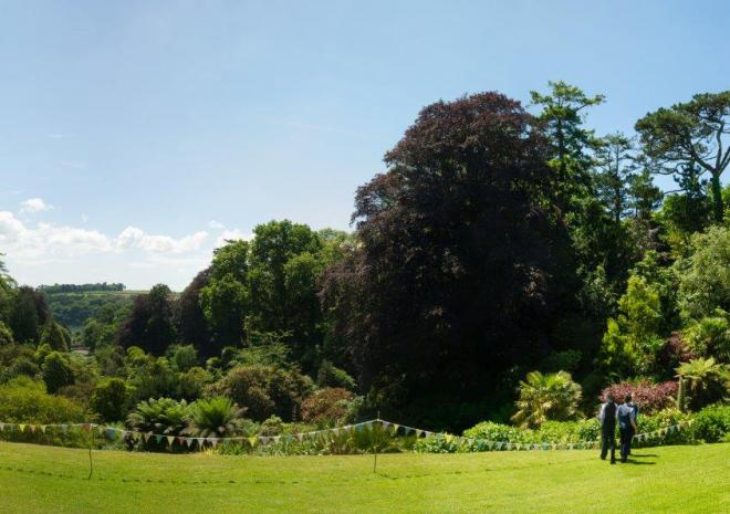 Trebah Garden, Wedding Venue near Falmouth, Cornwall