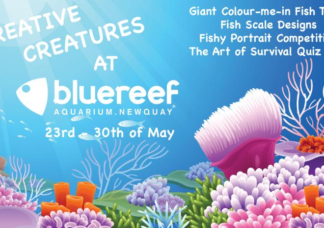 Blue Reef Aquarium, Newquay, Cornwall, May Half Term