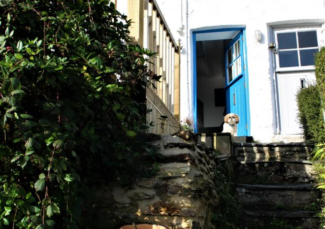 Stairs leading to front door at Fal River Cottage