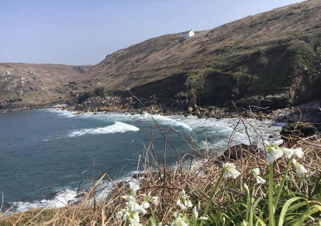 Spring at Wheal Call from Porthledden Bay