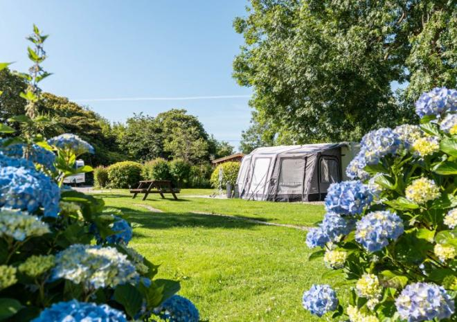 Heligan Caravan & Camping, South Cornwall