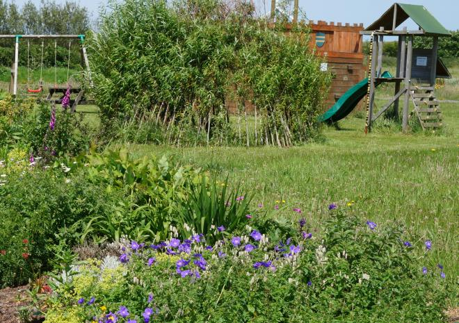 The play area and wildlife planting - The Arthurian Centre