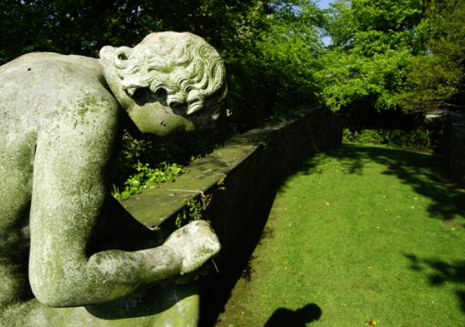Gardens in Cornwall | Prideaux Place | Padstow | Cornwall