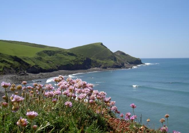 Lower Tresmorn Farm, Bed and Breakfast, Crackington Haven, Bude, Cornwall