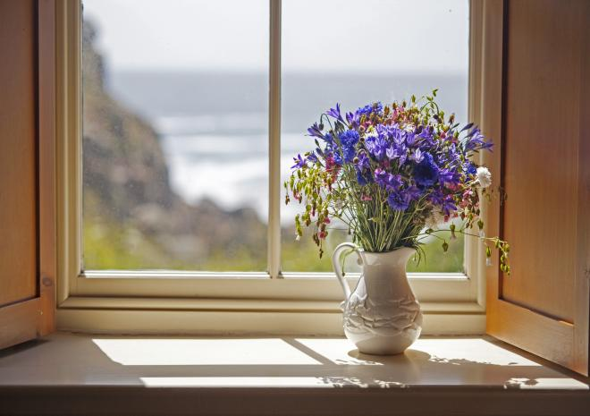 Views from Cove Cottage in Porthgwarra
