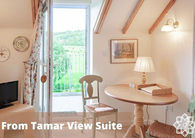 The view towards Devon from Tamar Suite