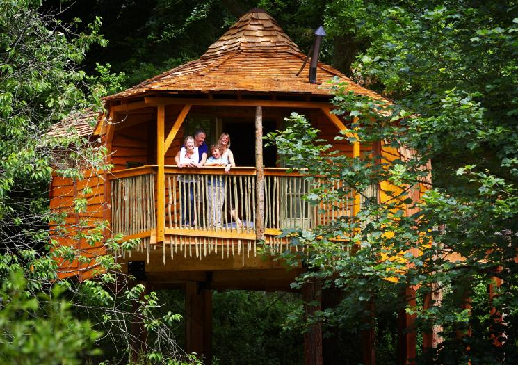 Deerpark Forest Holidays, Treehouse view