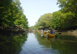Frenchman's Creek with Koru Kayak