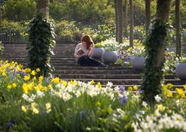 Photo of a lady reading a book in a Cornish Garden