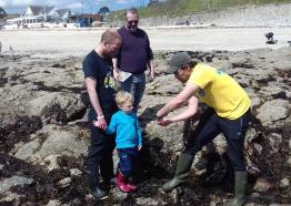 Rockpooling in Falmouth Bay, Cornwall