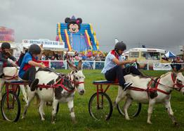 Liskeard Show, what's On Cornwall 2018