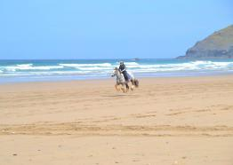 Horseriding in Cornwall   Reen Manor Riding Stables   Perranporth   Cornwall
