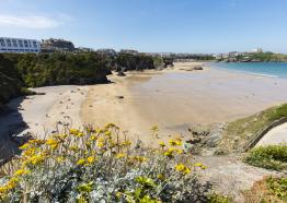 Great Western Beach, Newquay, North Cornwall