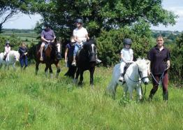 Things to do Cornwall   Riding Stables Cornwall   Bosvathick Riding Stables   Falmouth   Cornwall