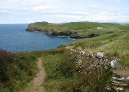 Things to do in Cornwall | Curtis-Beard Walking and Garden Holidays | Cornwall