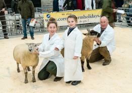 The Cornish Winter Fair, What's on, Cornwall, November 2016