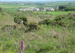 VIEW OF TREDINNEY FARM  FROM BARTINNEY HILL