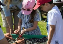 Potting up, gardening event, St Michael's Mount, half term event, Cornwall