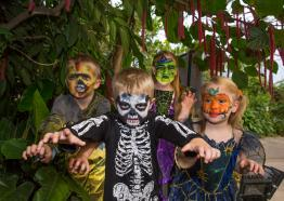 Halloweden, What's On 2019 Cornwall