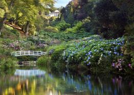 Trebah Garden, Mawnan Smith near Falmouth, Cornwall