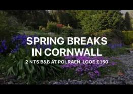 Polraen Spring Breaks in Looe Bed and Breakfast