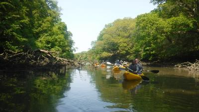 Frenchman's Creek, Cornwall, Koru Kayak