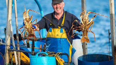 Lobster fisherman on Isles of Scilly