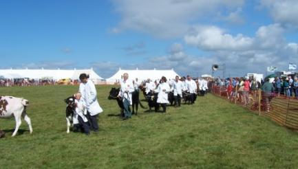 Camelford Agricultural Show, Cornwall